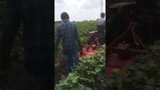 Inter raw cultivation live video of captain tractors