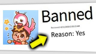 Dumbest Roblox Bans Ever (Flamingo)