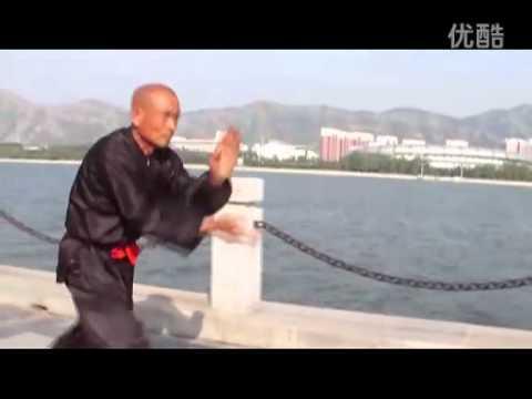 蛇拳She QuanSnake Fist