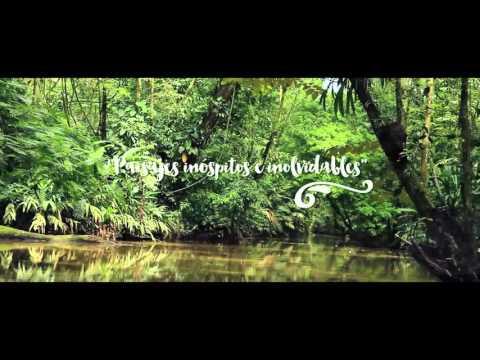 Tortuguero Costa Rica: Canales que te invitan a explorar