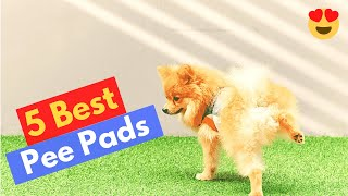 Which are the 5 Best Pee Pads for Large Dog Breeds? | Indoor Dog Potty Training |