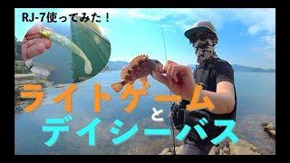 絶好調♪&絶不調… ライトゲーム(アジ・メバル)&デイシーバス(RJ-7) 編