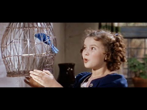 Download The Blue Bird 1940 | Shirley Temple Full Length Movie | Virtual Doll Convention
