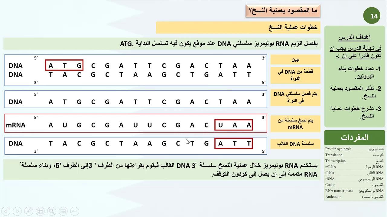 Almoktachif ملف شامل عن علم الاحماض النووية Dna