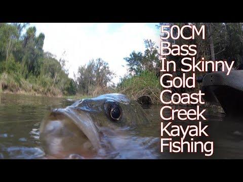 Skinny Creek Huge 50CM Australian Bass Kayak Fishing On The Gold Coast !