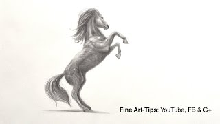 How to Draw a Prancing Horse With Pencil
