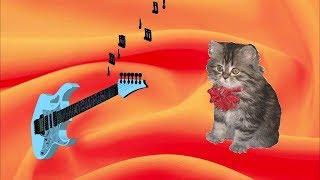 Котёнок 💢 Послушайте песню под гитару Сергея Новикова на стихи Лидии Тагановой