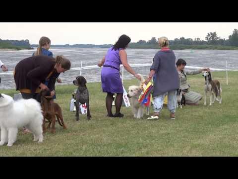 BIS Natilonal Dog Show in Rusne «Rusne Summer - 2014»