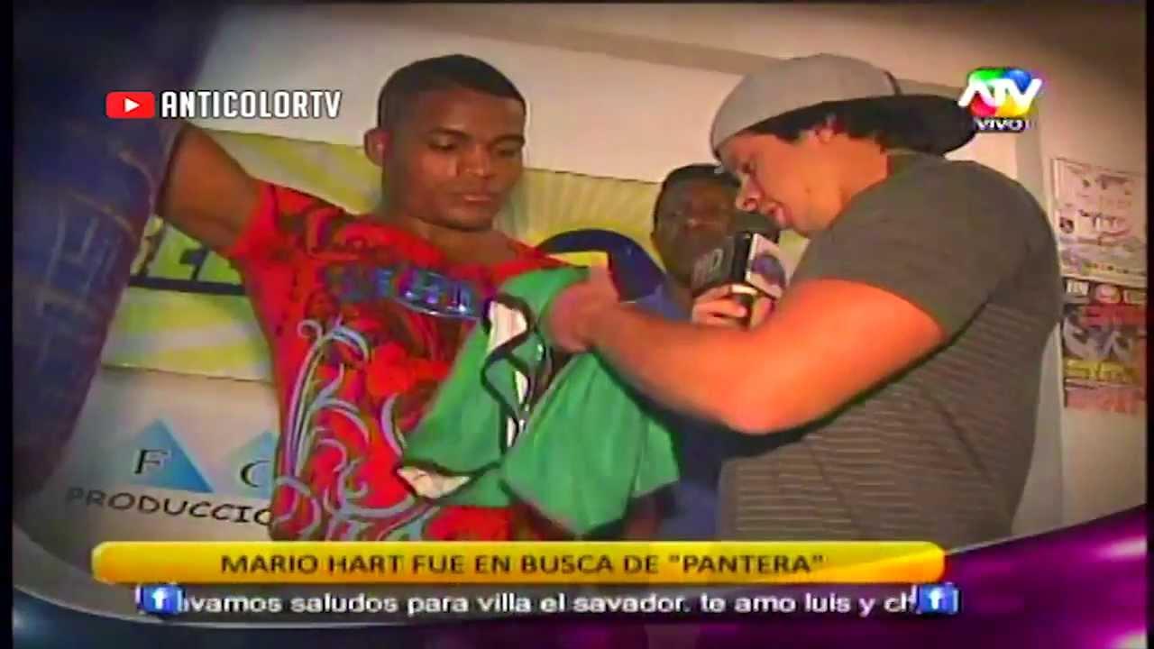 COMBATE Mario Hart fue a Buscar a la Pantera Zegarra 21/11/13