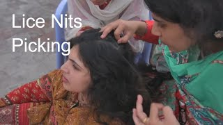 Multple Girls Head Lice Nit Picking with Hands - Free Stock ASMR Footage