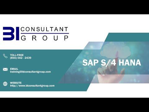 SAP S/4 HANA Simple Logistics Training Program - BI Consultant Group