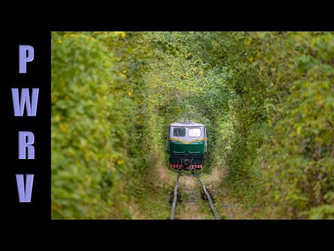 Chinese Narrow gauge - 762mm limestone railway Nanjing - tree tunnel!